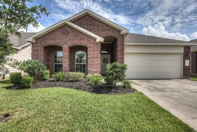 Tomball Single Family Home For Sale: 8723 Auburn Mane Drive