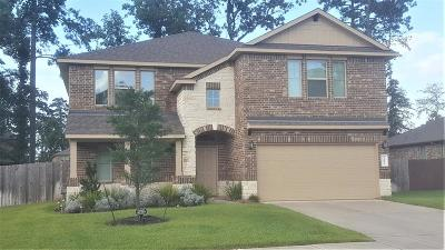 Conroe Single Family Home For Sale: 14022 Buffalo Gap Trail