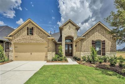 Fulshear Single Family Home For Sale: 28810 Rising Moon Lane