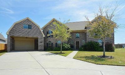 League City Single Family Home For Sale: 2221 Cochise Trl