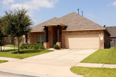Single Family Home For Sale: 22503 Shibe Park Court