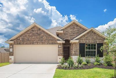 Harris County Single Family Home For Sale: 8815 Vasco Da Gama Trace