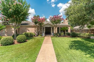 Houston Single Family Home For Sale: 702 E Briar Hill Drive E