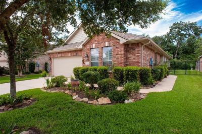 Pearland Single Family Home For Sale: 1246 N Riviera Circle