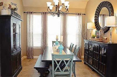 Fulshear Single Family Home For Sale: 27238 Symphony Creek Lane