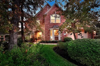 The Woodlands Single Family Home For Sale: 22 S Dulcet Hollow Circle