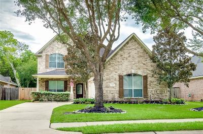 Sugar Land Single Family Home For Sale: 13115 Parkbrook Way Lane