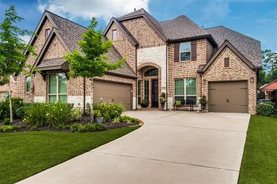 Single Family Home For Sale: 27115 Allenby Park Drive