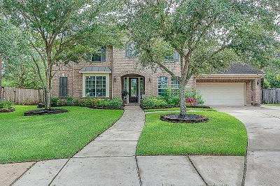 League City Single Family Home For Sale: 3207 Ashe Creek Drive