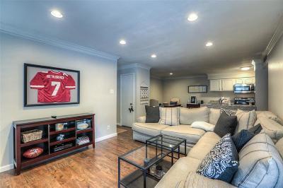 Houston TX Condo/Townhouse For Sale: $220,000