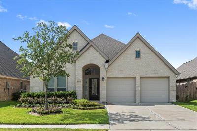Pearland Single Family Home For Sale: 13932 Naples Park Court
