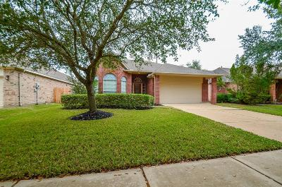 Sugar Land Single Family Home For Sale: 4807 Knights Branch Drive