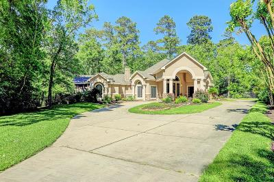 Tomball Single Family Home For Sale: 13706 Lost Creek Road