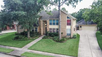 Houston Single Family Home For Sale: 15714 Sylvan Lake Drive