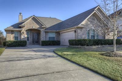 Single Family Home For Sale: 231 Rustic Oaks Drive
