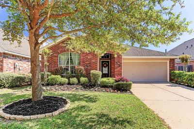 Missouri City Single Family Home For Sale: 3914 W Auden Circle