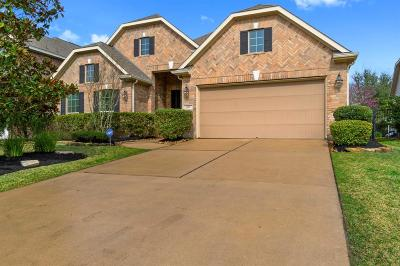 The Woodlands Single Family Home For Sale: 203 Pinto Point Drive