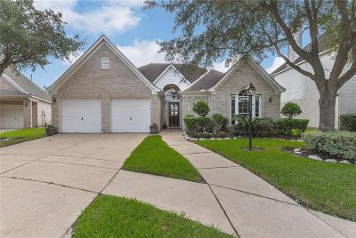 Houston Single Family Home For Sale: 3807 Shadow Trace Circle