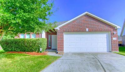 Houston Single Family Home For Sale: 2730 Fieldcross Lane
