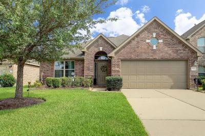 Houston Single Family Home For Sale: 9231 Durango Point Lane