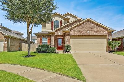 Katy Single Family Home For Sale: 6422 Black Bamboo Lane