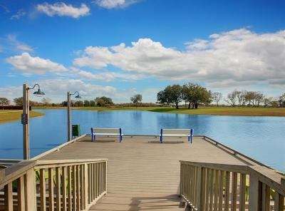 Manvel Single Family Home For Sale: 4312 Pine Harvest Lane