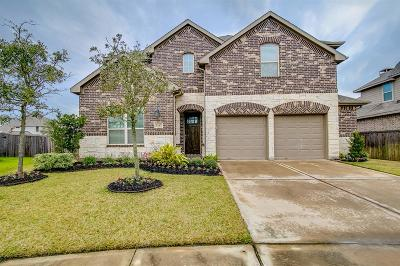 Manvel Single Family Home For Sale: 3107 Chuska Mountain Lane