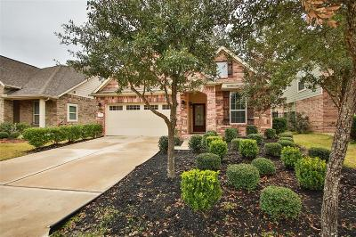 Tomball Single Family Home For Sale: 38 Wood Drake Place