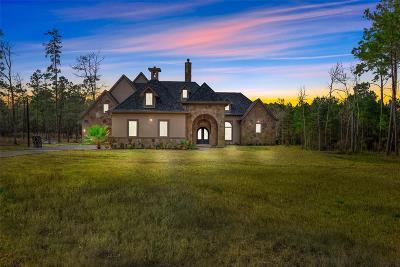 Magnolia Single Family Home For Sale: 315 Mapleleaf Street