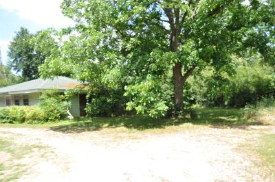 Tomball Single Family Home For Sale: 17210 Fm 2920 Road