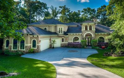 Conroe Single Family Home For Sale: 7439 Enchanted Stream Drive