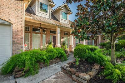 The Woodlands Single Family Home For Sale: 19 Rowan Tree Place