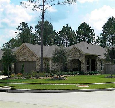 Montgomery Single Family Home For Sale: 102 Verbena Way