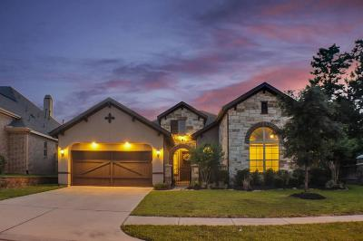 Conroe Single Family Home For Sale: 1006 Carissa Holly Drive