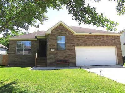 Houston Single Family Home For Sale: 17007 Loch Raven Lane