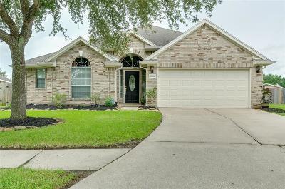 Houston Single Family Home For Sale: 10306 Chelsea Brook Lane