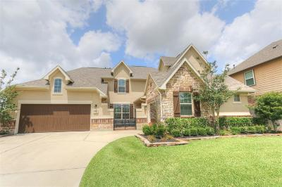 Tomball Single Family Home For Sale: 17807 Hillegeist Lane
