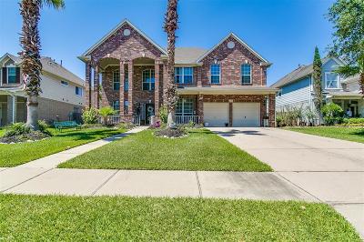 Sugar Land Single Family Home For Sale: 13922 Blue Vista Drive
