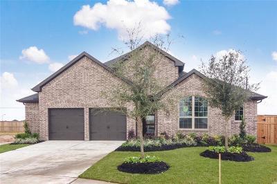Fulshear Single Family Home For Sale: 28539 Damon Creek Lane