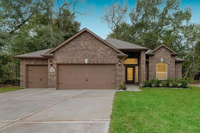 Single Family Home For Sale: 208 Spanish Dr