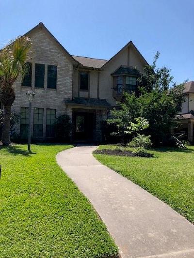 Houston Single Family Home For Sale: 20735 Stone Mountain