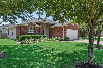 Cypress Single Family Home For Sale: 16915 Empty Ness Drive
