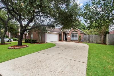 Pearland Single Family Home For Sale: 2719 W Oaks Boulevard