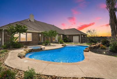 Dickinson Single Family Home For Sale: 6803 N Oak Drive