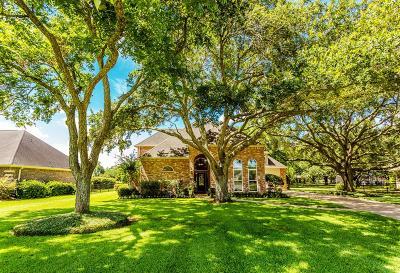 Fulshear Single Family Home For Sale: 32511 Watersmeet Street