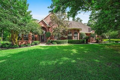 Montgomery Single Family Home For Sale: 18715 Grand Harbor Point