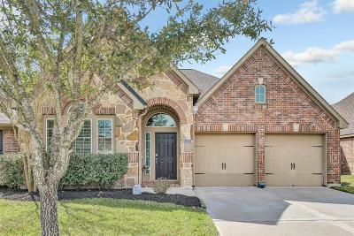Pearland Single Family Home For Sale: 14110 Green Thicket Drive