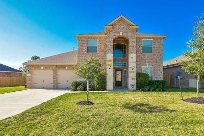 Conroe Single Family Home For Sale: 9103 Nina Road