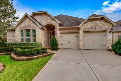 Tomball Single Family Home For Sale: 27 Witherbee Place