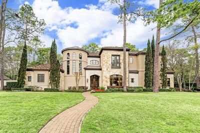 Houston Single Family Home For Sale: 819 Creek Wood Way